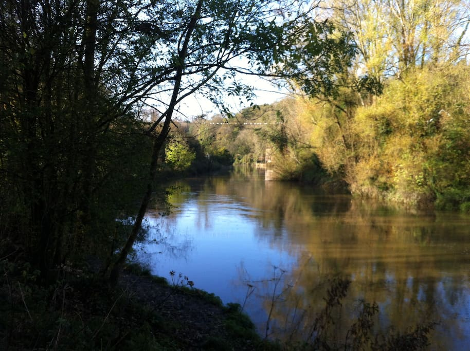 Conham River Park,  just 15 minutes further walk from the house, great for sunny walks and wildlife spotting!