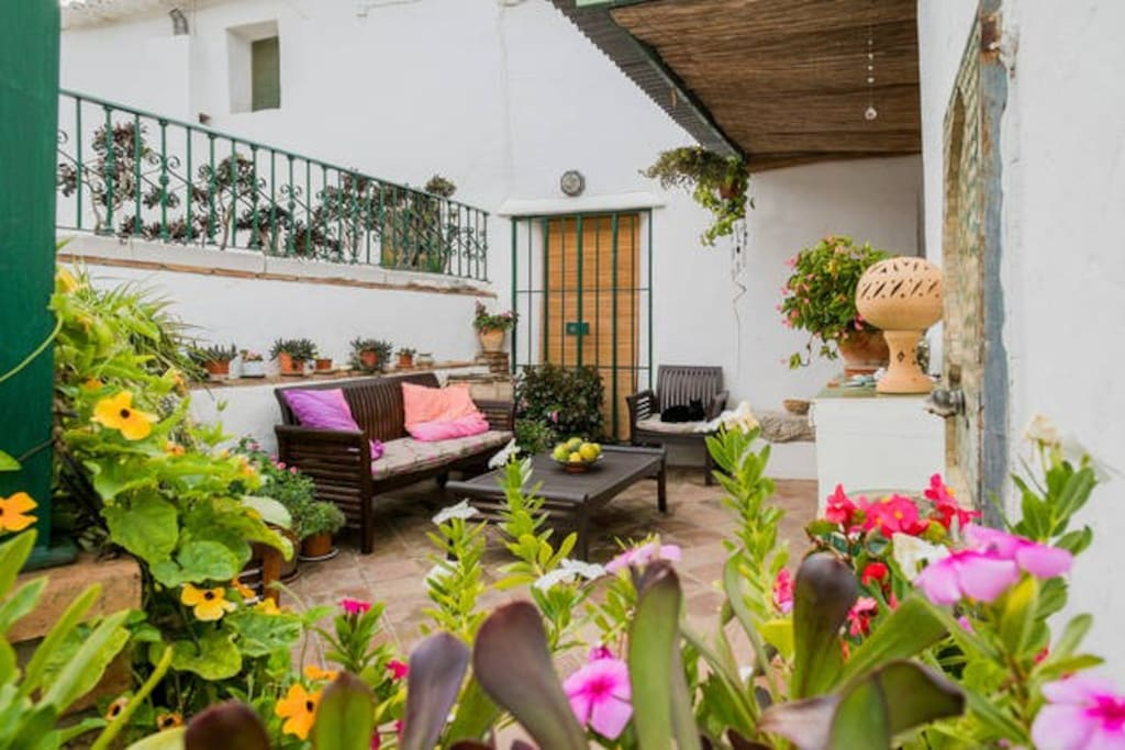 Always flowers on the terrace at Casa Granadina