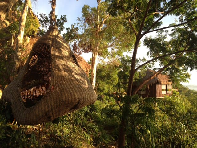 Sanctuaria Treehouses - Busuanga - Rumah Pohon