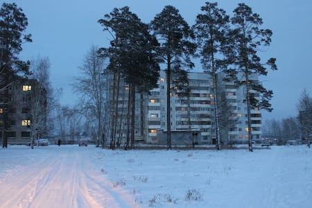 Уютная квартира в Энергетике