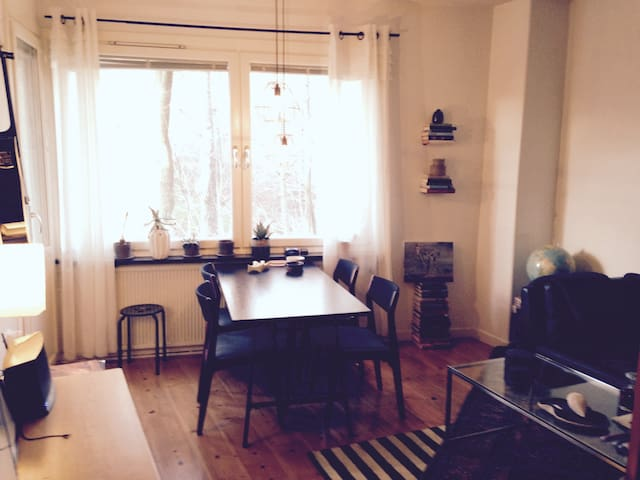 Charming apartment 15 min to city