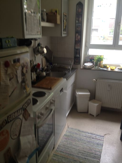 Kleine vollausgestattete Küche. E-Herd und Spülmaschine