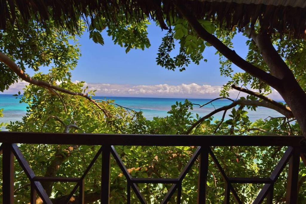cabane dans les arbres sur la plage belle vue mer cabanes dans les arbres louer ile. Black Bedroom Furniture Sets. Home Design Ideas