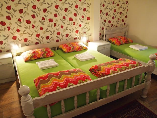Room in the awarded Hedonist Hostel - Beograd - Rumah