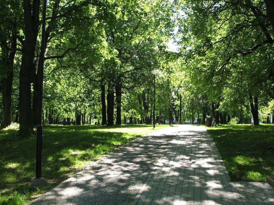 Kalamaja Park