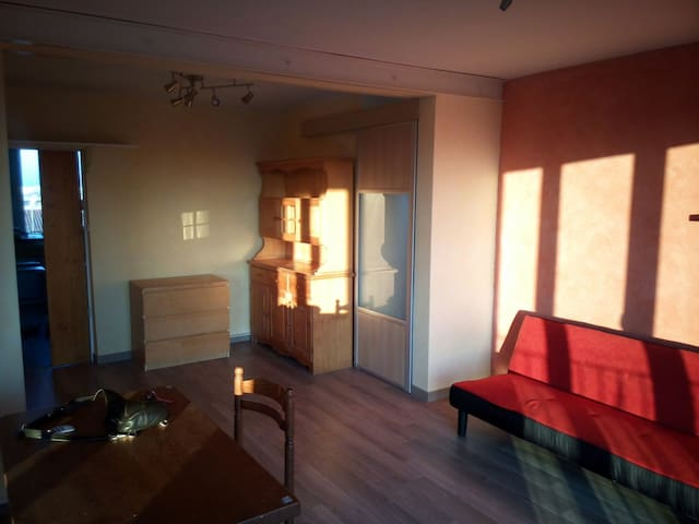 Apt 70m² T3 St Martin du Touch Toulouse Airbus