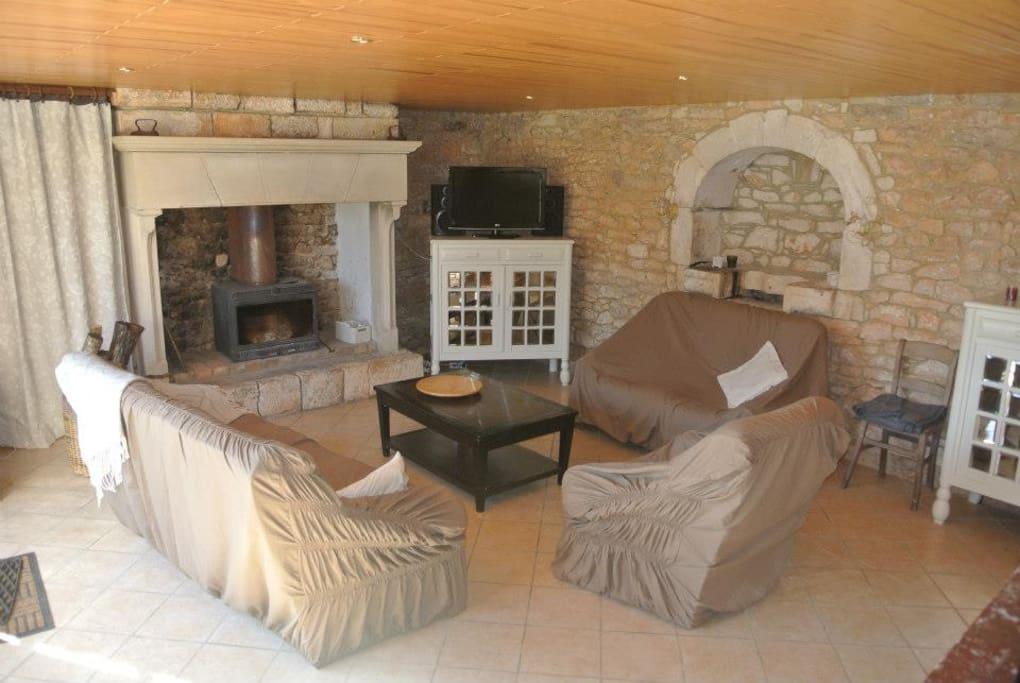 Salon avec cheminée et bois à disposition