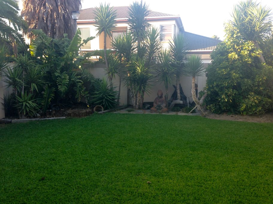 Garden and lawn