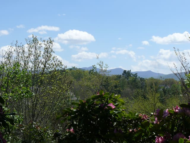 Asheville retreat near ski slopes - Weaverville - Apartamento