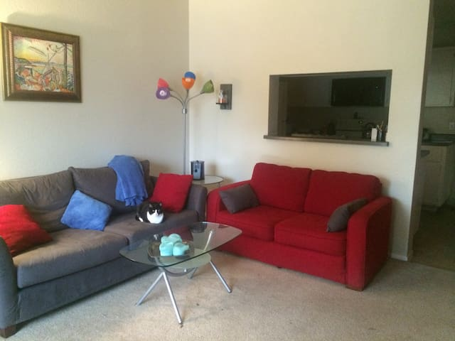 Clean Private Furnished 1 Br Apt - Campbell - Apartamento