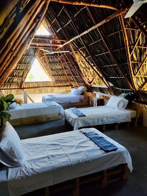 Mellow Hostel El Paredon - Breezy Studio Dormitory