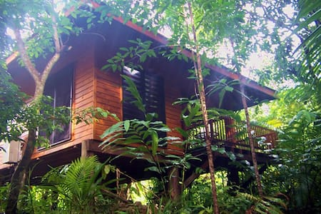 Wildwood cabin on exotic orchard - Cape Tribulation - 小木屋