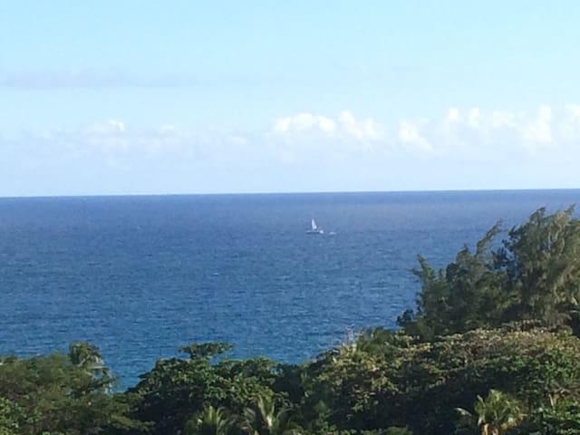 Apartamento con vista al mar el lugar seguro. - Maunabo - Flat