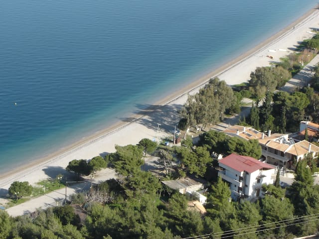 Luxury apartments, front beach  - Paralia Trapezis - Apartamento