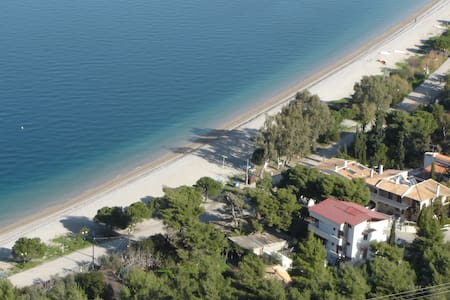 Luxury apartments, front beach  - Paralia Trapezis - Apartemen