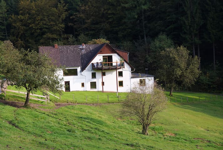 110 m² in the middle of the Natur! - Plettenberg - Huoneisto