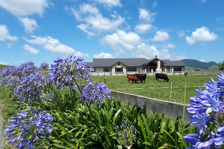 Highllyn B & B close to Hobbiton, a peaceful haven