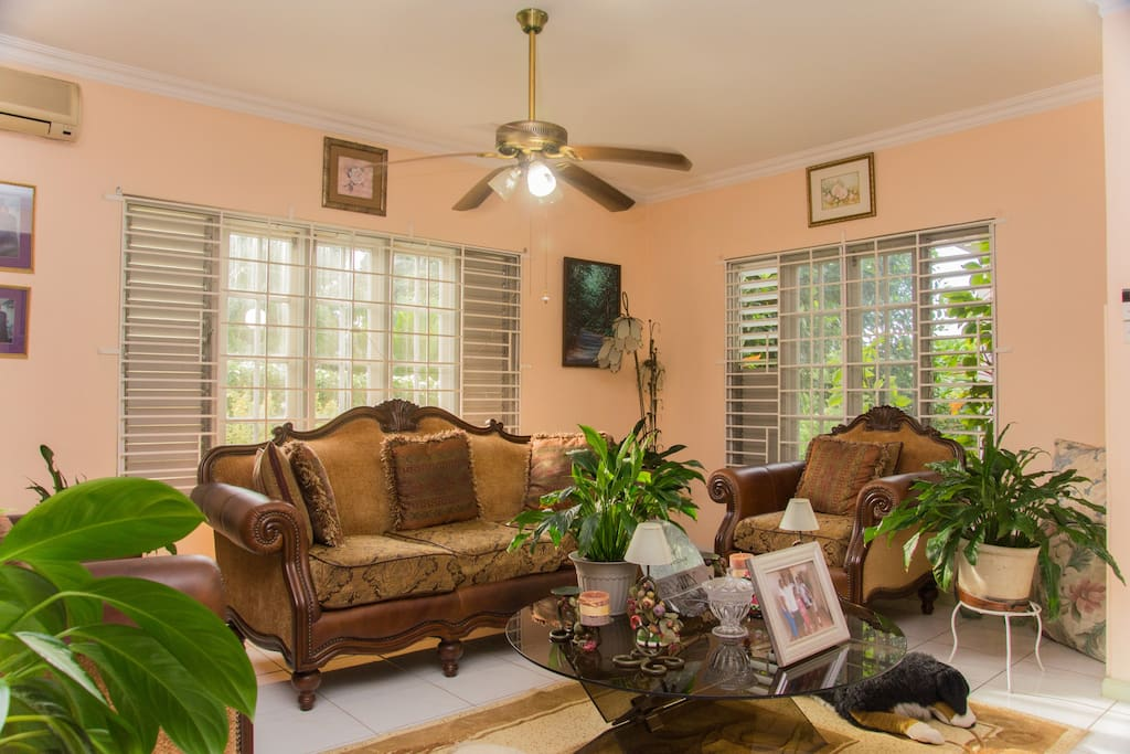 A section of the beautiful living room, decorated with indoor plants