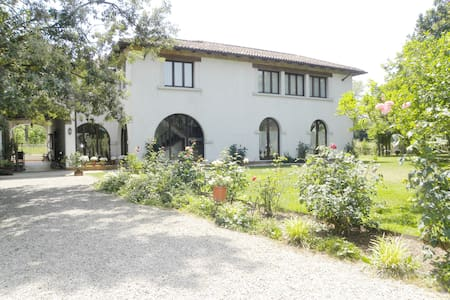 Wonderful villa with Jacuzzi  - Mogliano Veneto