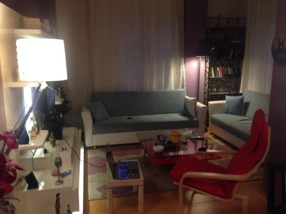 Living room with comfortable coaches and armchair