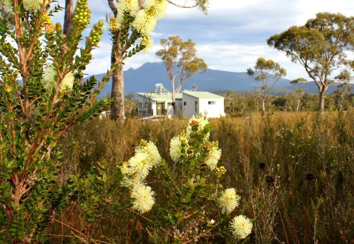 EcoCabin: Southernmost in Australia