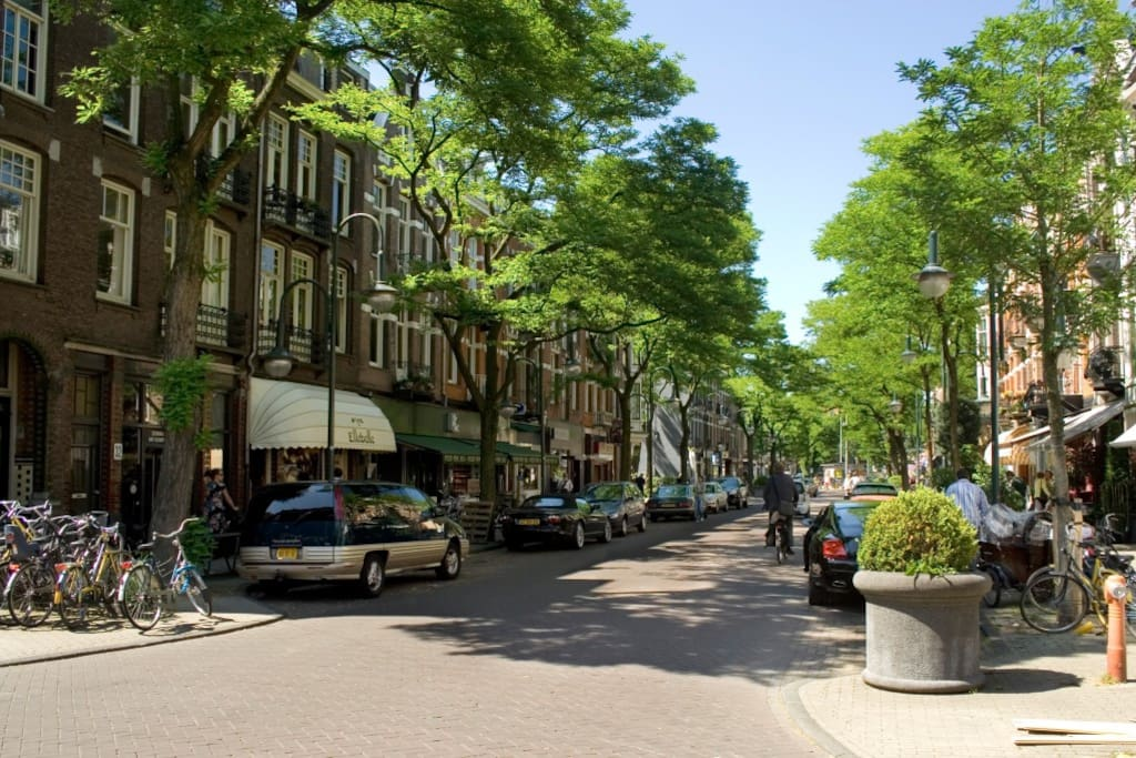 The area is called Amsterdam 'Old South' and is know for its beautiful streets and nice restaurants near the center