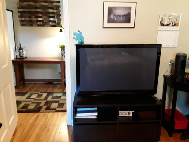 47 inch tv with Roku