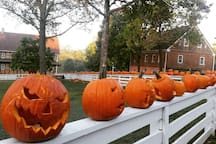 Spooky Jack o'lanterns decorating the fence around the town square & another beautiful October morning in #oldsalem  Quite Spooktacular sight, even more incredible lit up at night for trick or treat ~Boo!