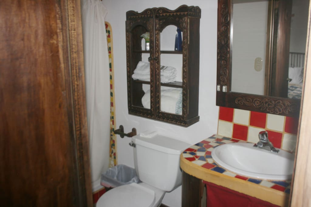 Bathroom. There's a mirror and storage space under the sink.