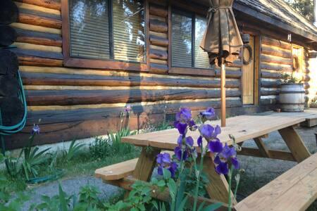 Cozy log cabin nestled by the lake - South Lake Tahoe - Blockhütte