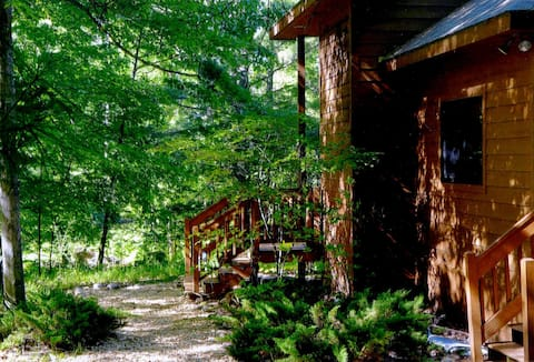NW Michigan house w/ lake & woods