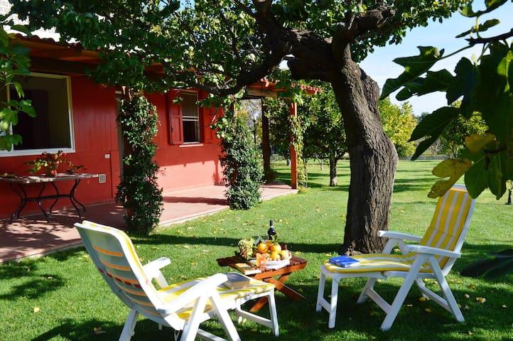 Villa Irene unità B con giardino - Pisticci Matera - Pisticci - Villa