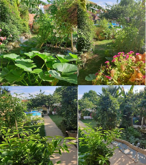 studio indépendant  jardin et terrasse + piscine