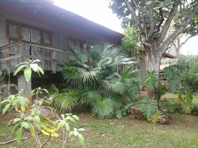 Grandma's Retreat - Ceiba - Villa