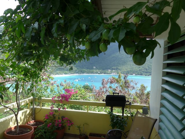 10 minutes from the best beach in the BVI - VG - House