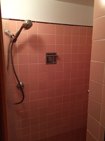 Shower with detachable head