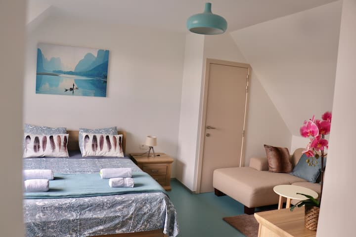 Cosy  large room & bathroom in city Ghent