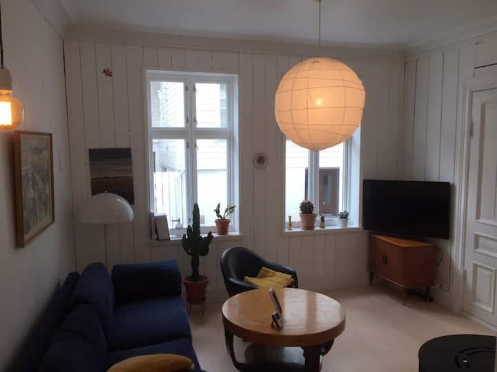 Lys og triveleg leilighet på Nordnes