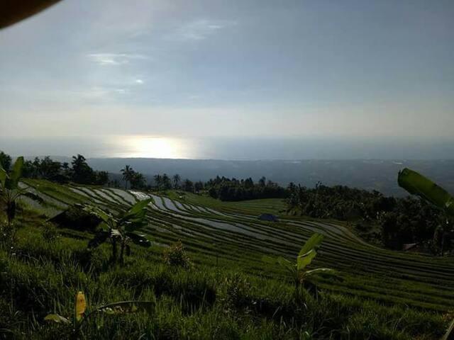Baliarta Sweet Village