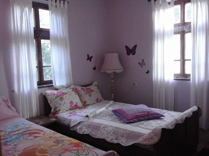 Art guest house Margo