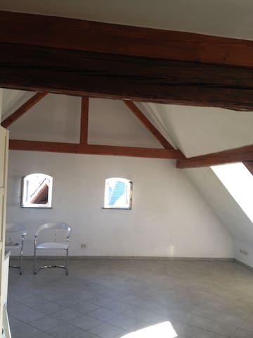 Rooftop flat in a timber framed house - Kembs - Byt