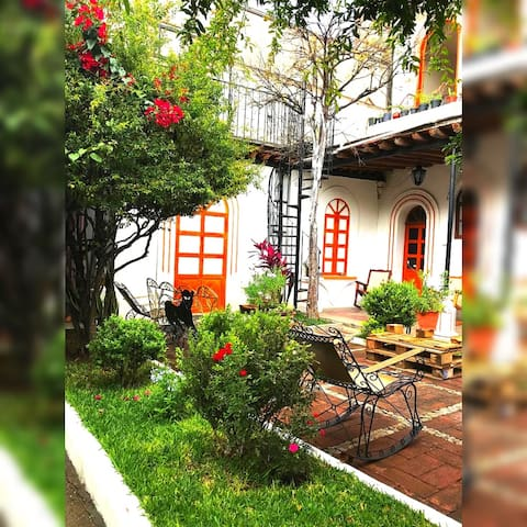 #Best Location in Oaxaca - Beautiful Garden