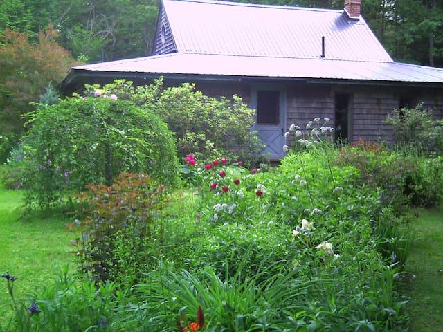 Mid-Maine woods cottage