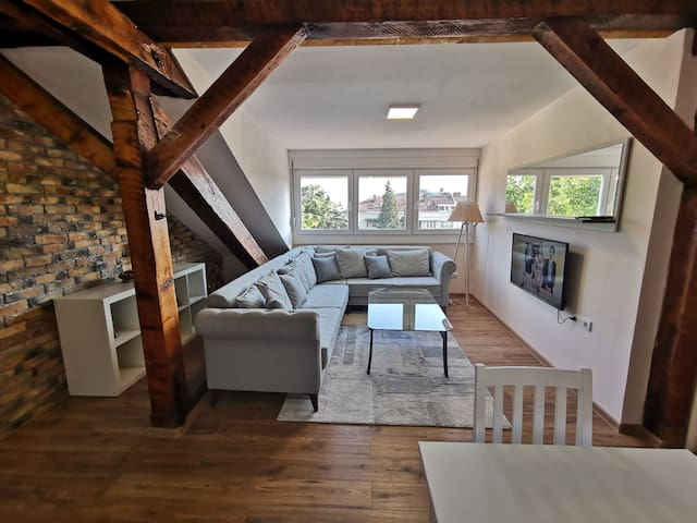 Rustic,new,luxury 2BR apartment in the city centre