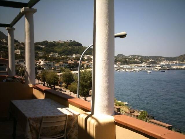 wunderschöne Wohnung am Meer - Casamicciola Terme - Wohnung