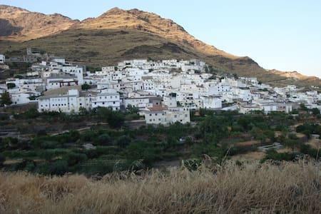 maison blanche typique andalouse  - Senes  (Almeria)