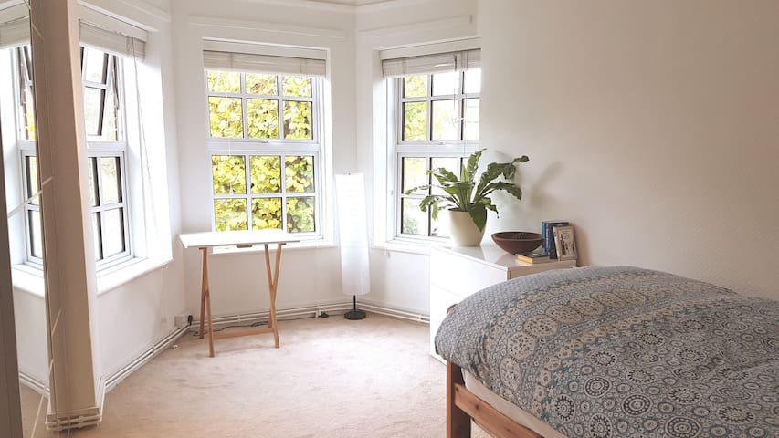 Bright private single room with own bathroom