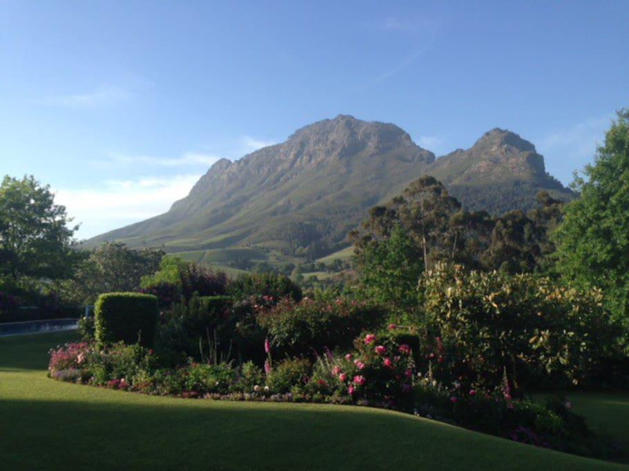 Apartments To Rent In Stellenbosch