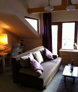 2 cosy ski aparts nr airp /sleep 8 - Smolyan - Apartment