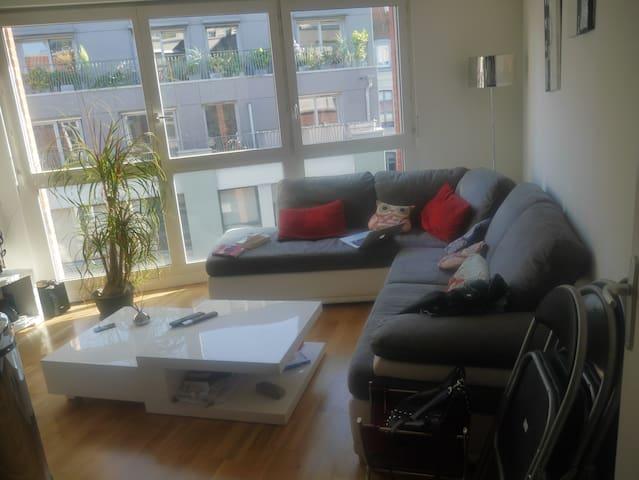 appartement T2 proche de la citadelle - Lille - Pis